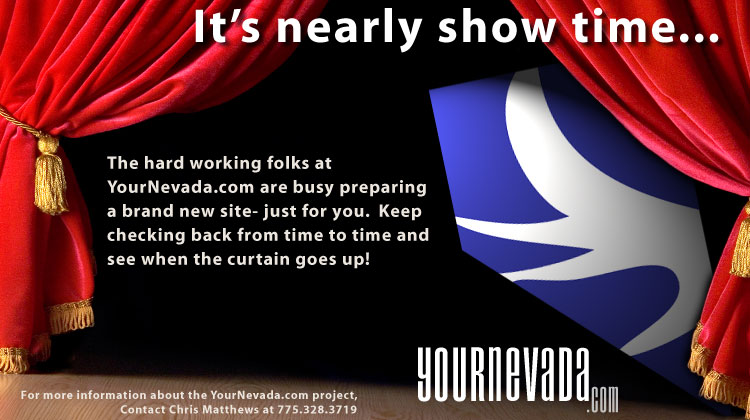 YourNevada.com is a multi-agency government web portal.  For more information on the project, contact Chris Matthews @ 775.328.3719